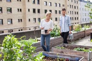 Ungt par i stadsodling tar hand om plantering på tak